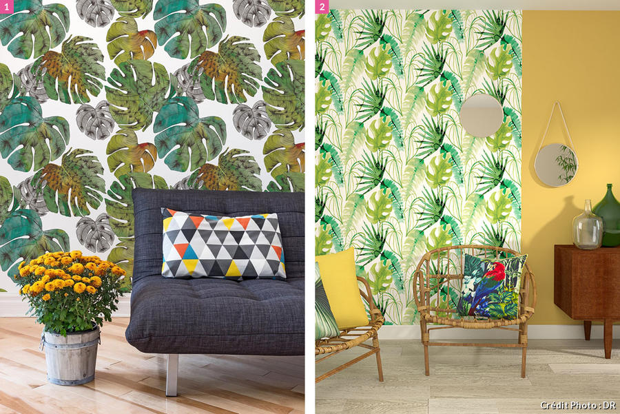le monstera la plante reine pour une d co tropicale maison cr ative. Black Bedroom Furniture Sets. Home Design Ideas